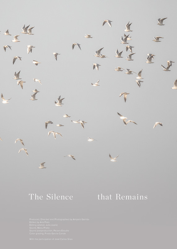 The silence that Remains